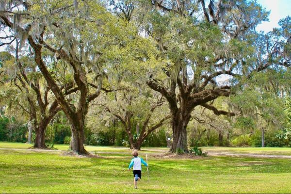 More Charleston Parks Equipped with Free Internet Access